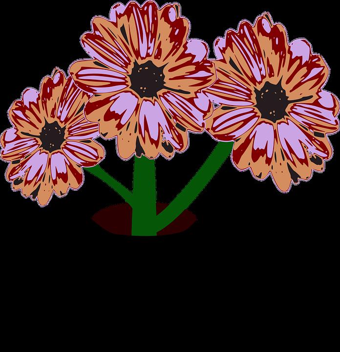 Kwiaty Róże Czarny - Darmowy obraz na Pixabay