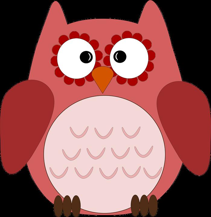 Chouette Mignon De Hibou Oiseau Image Gratuite Sur Pixabay