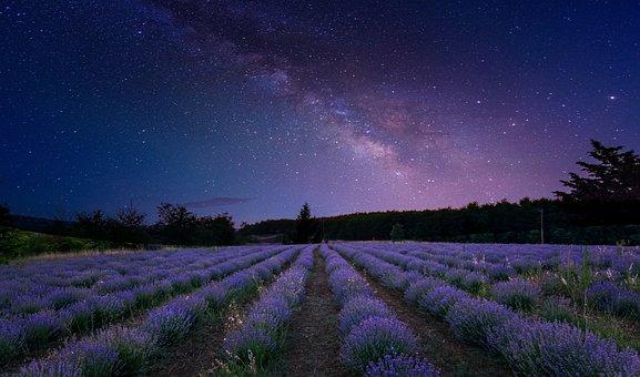 Milky Way, Sky, Stars, Cosmos, Night