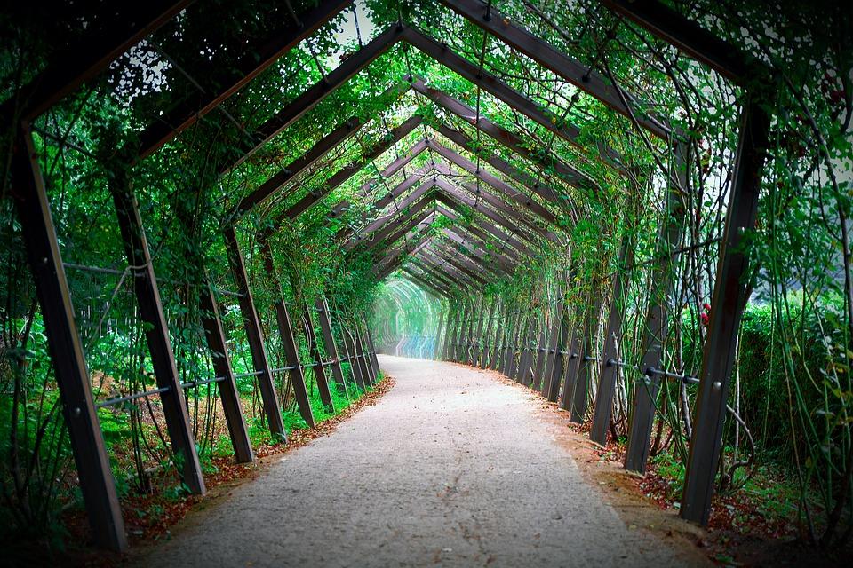 トンネル, 道, 風景, 連続, 自然, 背景