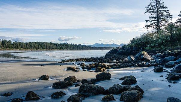 Beach, Tofino, Vancouver Island
