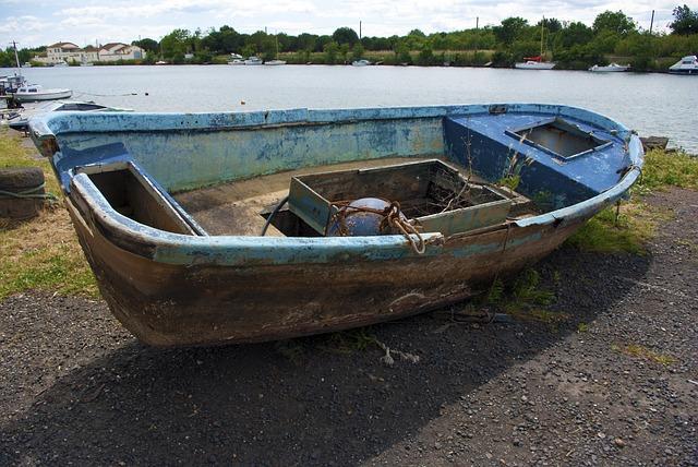 многих собаководов название лодок с фото старые хомячков отмечается довольно