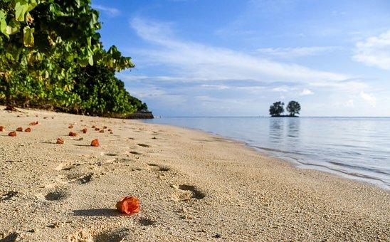 Seychelles, Beach, Beachfront, Sand