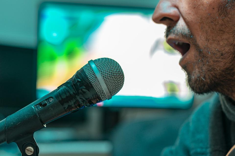 Voco Pro Karaoke Machine