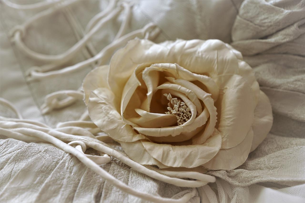 Rose Stoff Blume - Kostenloses Foto auf Pixabay