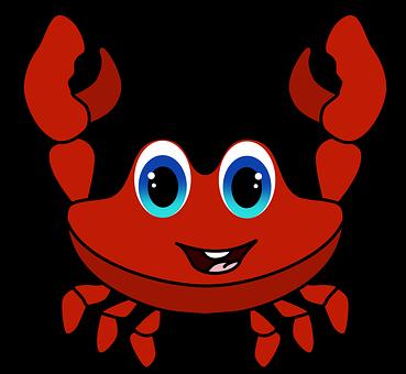 Meer, Zeichnung Krabbe, Rote Krabbe