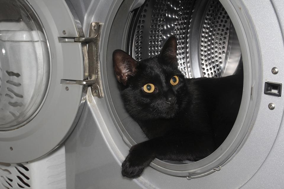 Image result for mildew washing machine