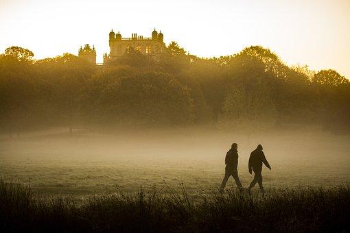 Outdoors, Mist, Walking, Fog, Nature
