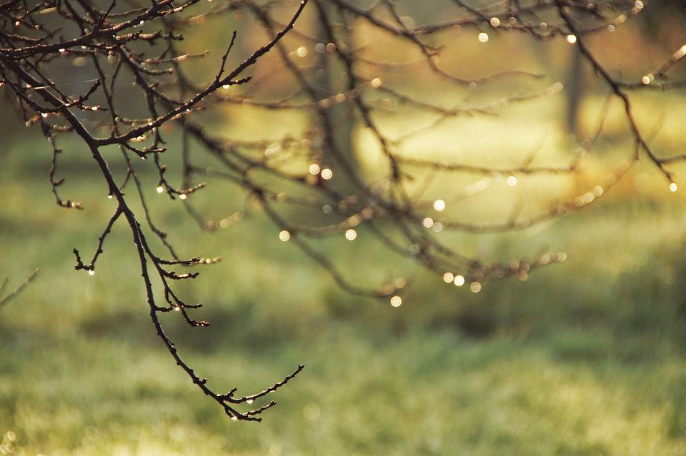 Осень - самое уютное время года - Страница 2 Aesthetic-4571211_960_720