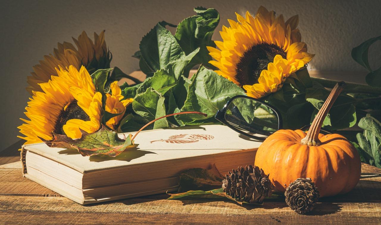 Quelles fleurs comestibles faut-il absolument avoir dans son jardin ?