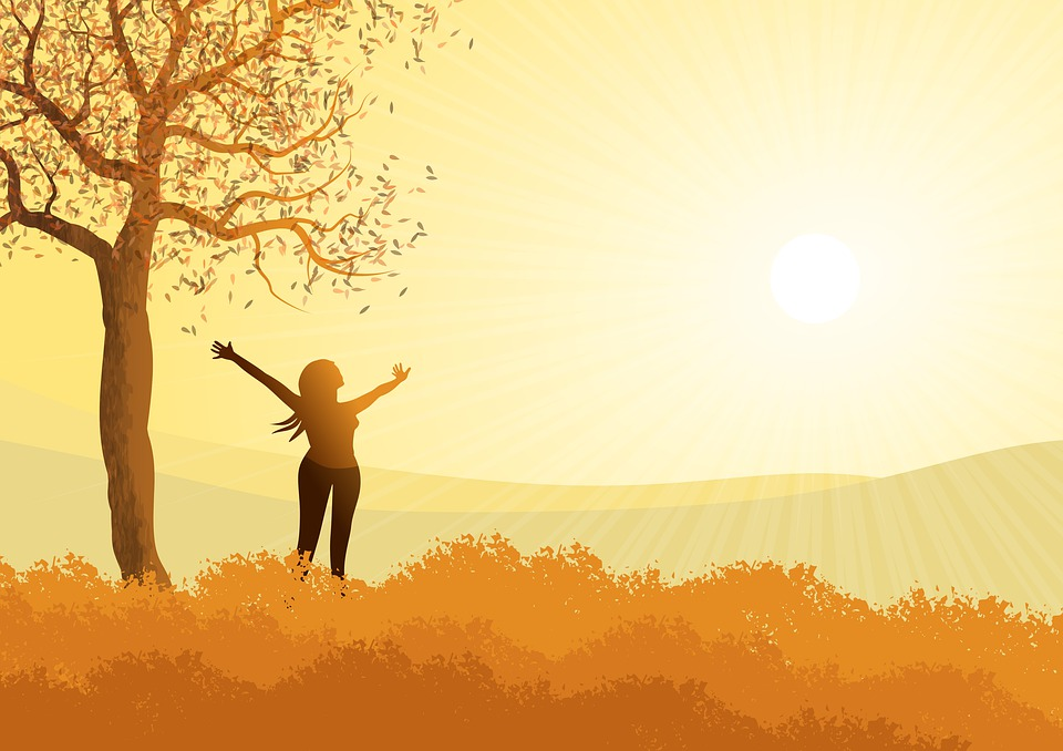 風景, 図, 秋, 女性, ソル, 明るさ, 光, ツリー, 葉, 自由, 駅, バック グラウンド, 壁紙