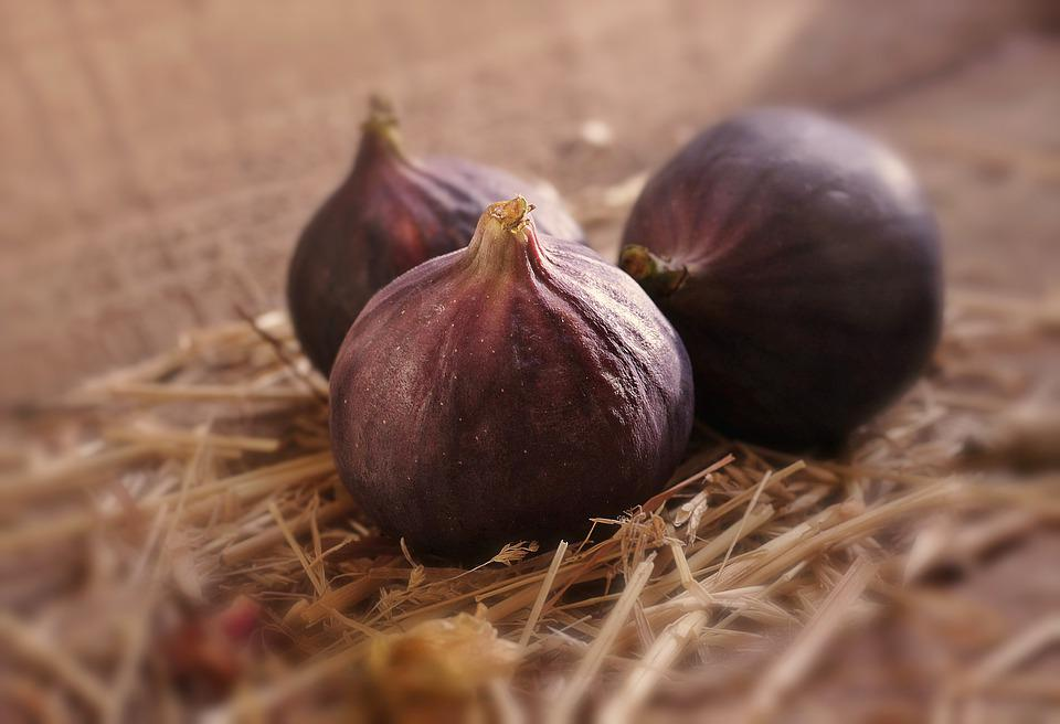 Fig, Fruit, Healthy, Ripe, Vitamins, Food Photo, Food