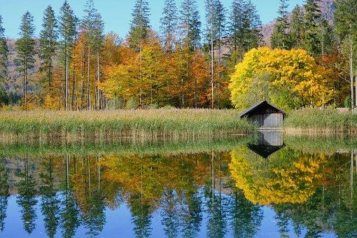 性质, 景观, 湖, 秋季, 秋, 颜色, 丰富多彩, 秋天的颜色, 叶变色