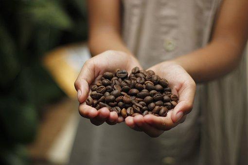 コーヒー, コーヒー豆, 香り, ロースト, 豆, エスプレッソ, カプチーノ