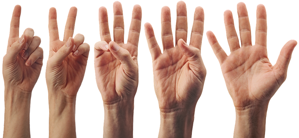Hand Palm Fingers Free Photo On Pixabay ✓ free for commercial use ✓ high quality images. hand palm fingers free photo on pixabay