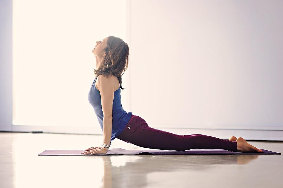 Yoga, Meditation, Lifestyle, Upward Dog, Asana