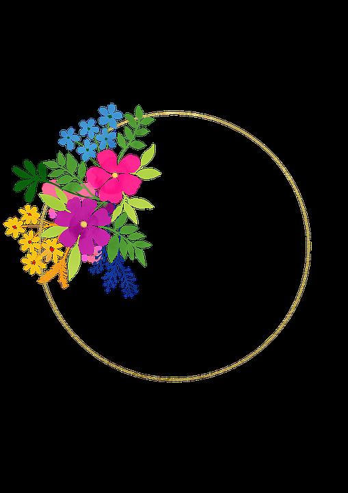 Cat Air Bunga Bingkai Alam Gambar Gratis Di Pixabay