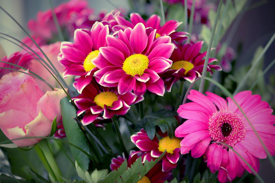 Buket, Gerbera, Lyser?d, Lyse, Flok Blomster, Mors Dag