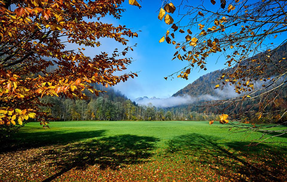 Hagertal, 風景, チロル, Kössen, 保護された景色区域, 自然, 農業, バイオ, 牧草地