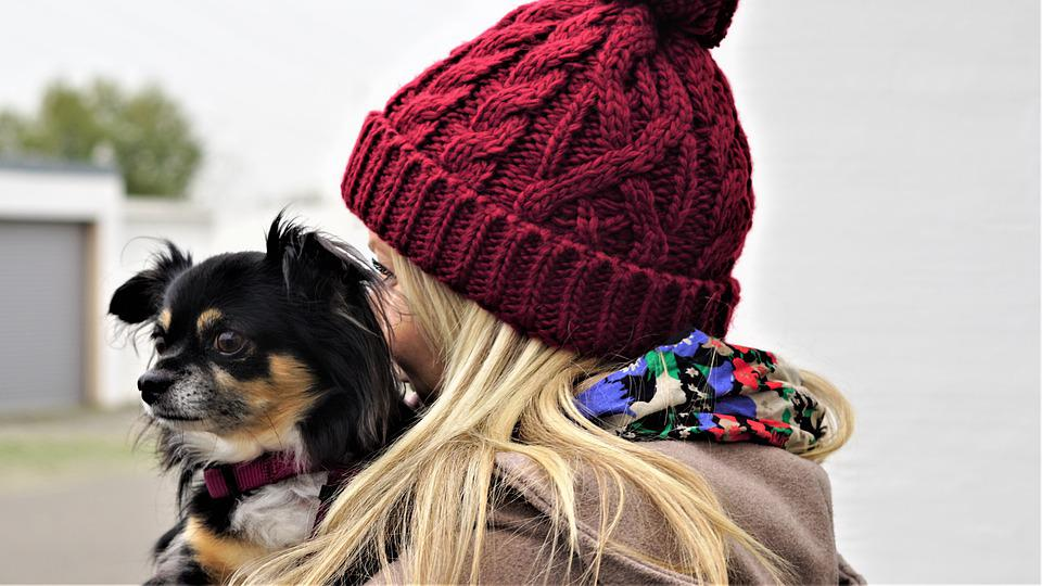 人間と動物, 背景, 秋, 11 月, 冷, キャップ, ニット, ファッション, 金髪ロングヘアー, 布