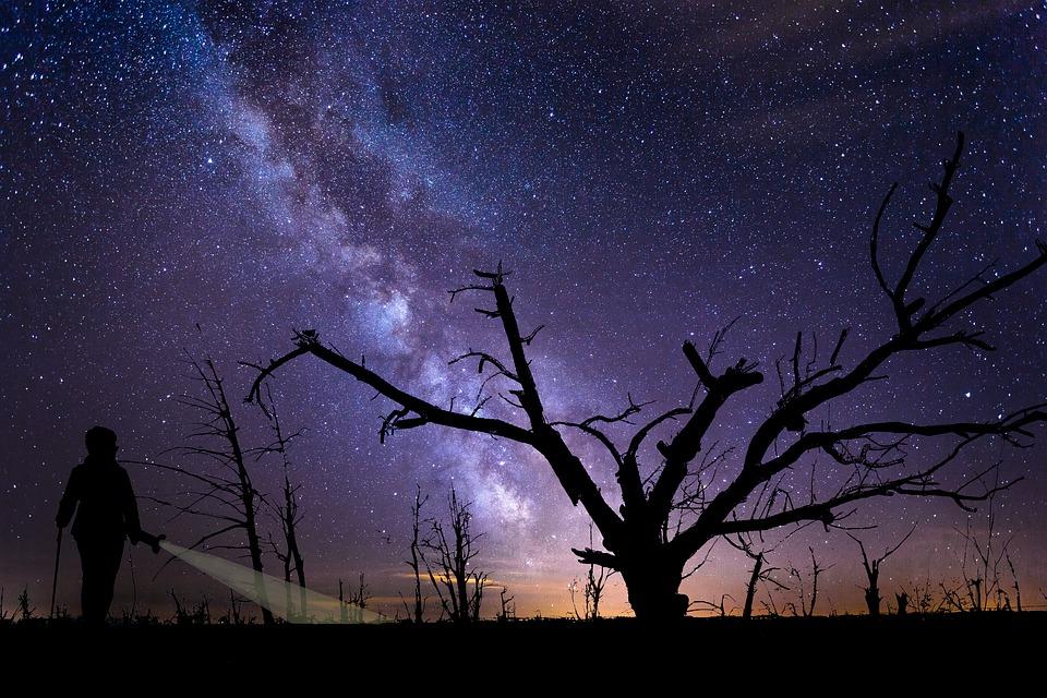空, 天文学, 夜, 宇宙, 暗い, 星, 銀河, 星座, 人, ランプ, ツリー, 自然