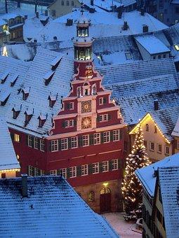 Christmas, Christmas Tree, Winter, Snow