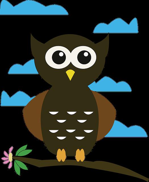 Owl Cartoon Bird Free Vector Graphic On Pixabay