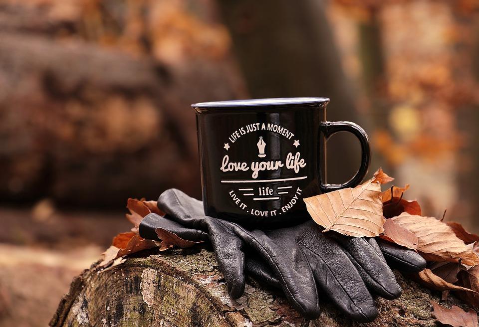 Bos, Herfst, Cup, De Liefde Van Uw Leven, Motto