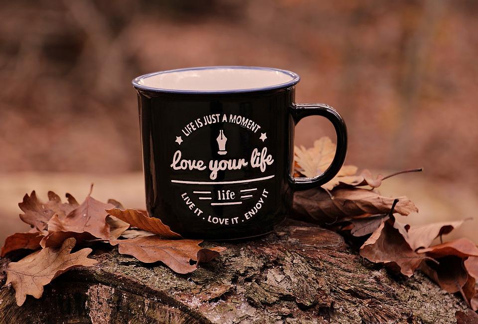 フォレスト, 秋, カップ, 愛の生活, モットー, 葉, 紅葉, 残り, 休憩, 木の幹, 自然, 気分