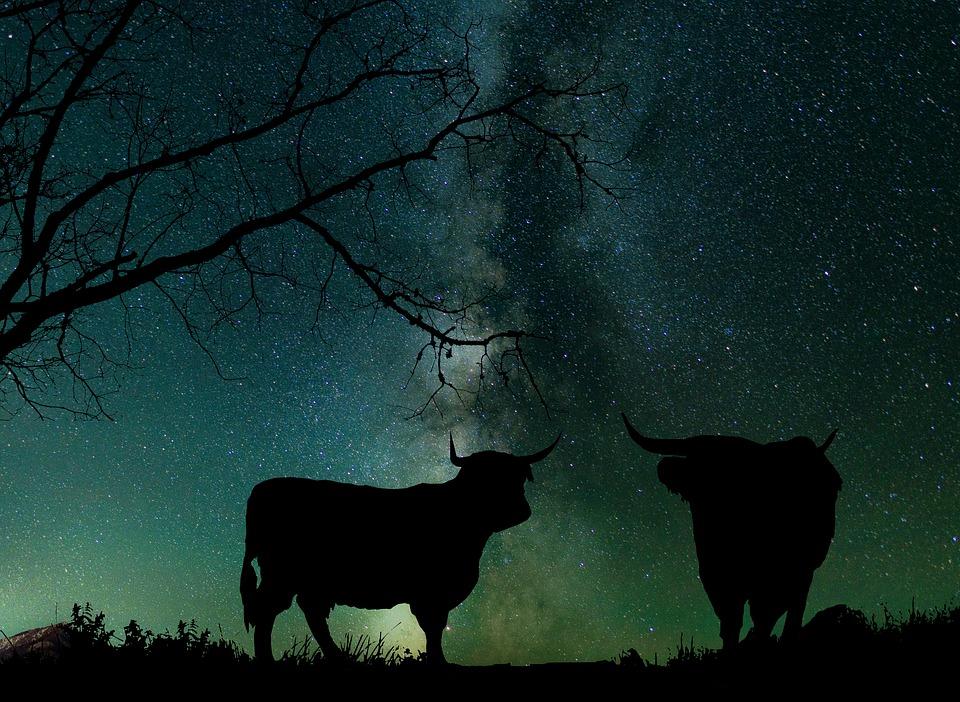 Natur, Sky Astrologi, Galakse, Universet, Stjerner
