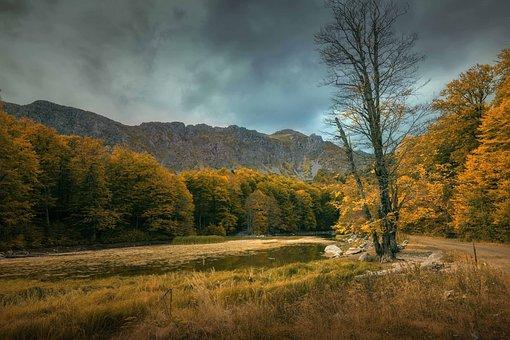 ファンタジー, Alp 企業様, 湖, 木, 森林, 秋, 空