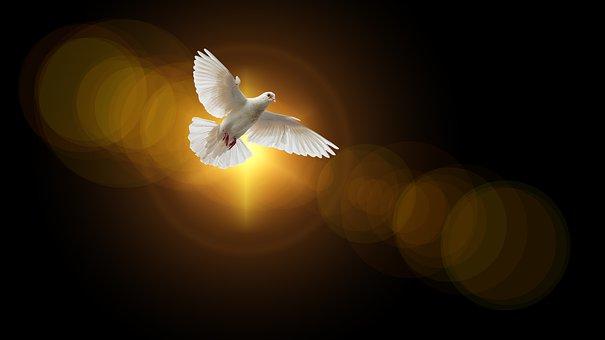 Faith, Dove, Holy Spirit, Christianity