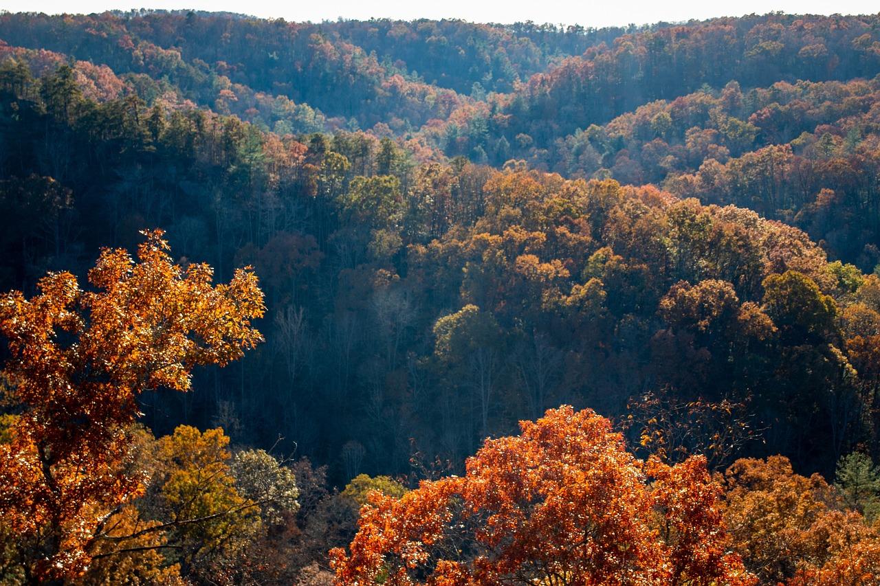 Appalachia Mountains North Free Photo On Pixabay