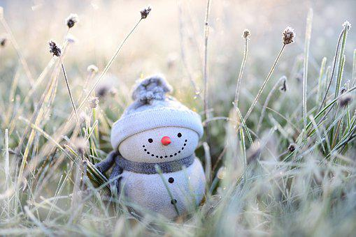 Snowman, Winter, Grasses, Hoarfrost