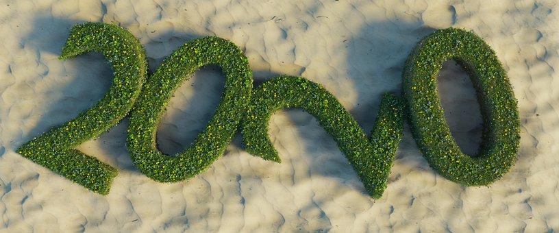 Year 2020, Grass, Graphic, Nature