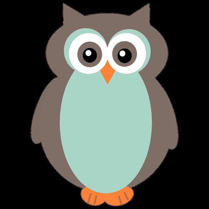 Clipart Chouette Oiseau La Image Gratuite Sur Pixabay