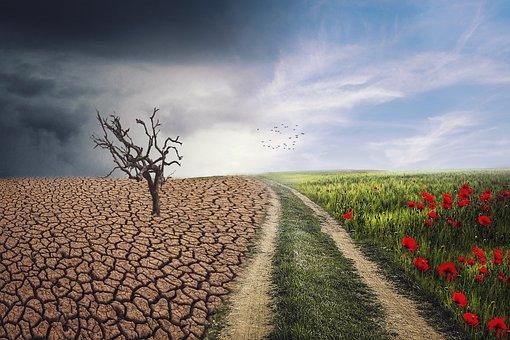 Landscape, Change, Climate, Nature, Sky