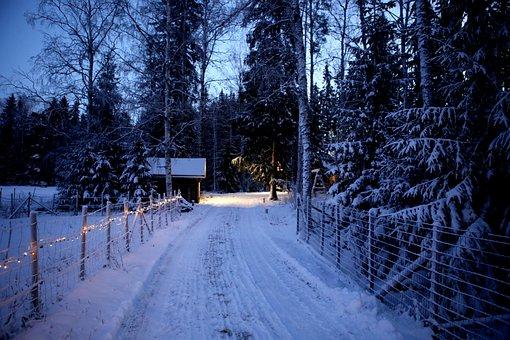 Winter, Snow, Christmas, Lights, Evening