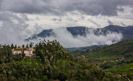 丘, 雲, Nilgiris, タミル·ナードゥ州, インド, 風景, 自然