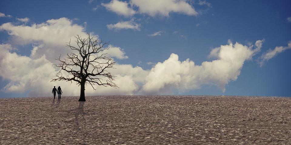 Klima, Klimawandel, Dürre, Wolken, Paar, Person