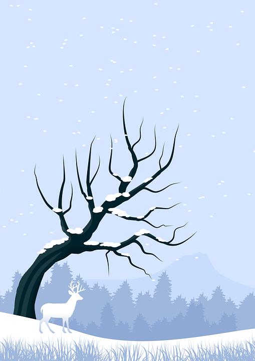 Ilustracja, Boże Narodzenie, Pocztowy, Karta, Śnieg