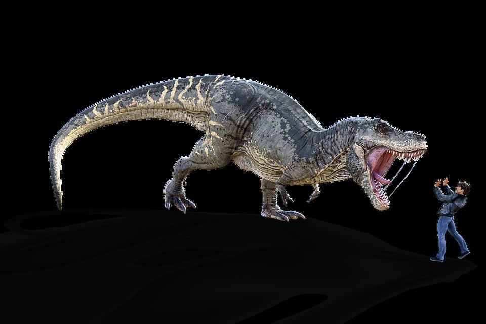 恐竜, ティラノサウルス, T レックス, 絶滅しました, 捕食者, 肉食獣, 危険, ハンター, 恐怖, 歯