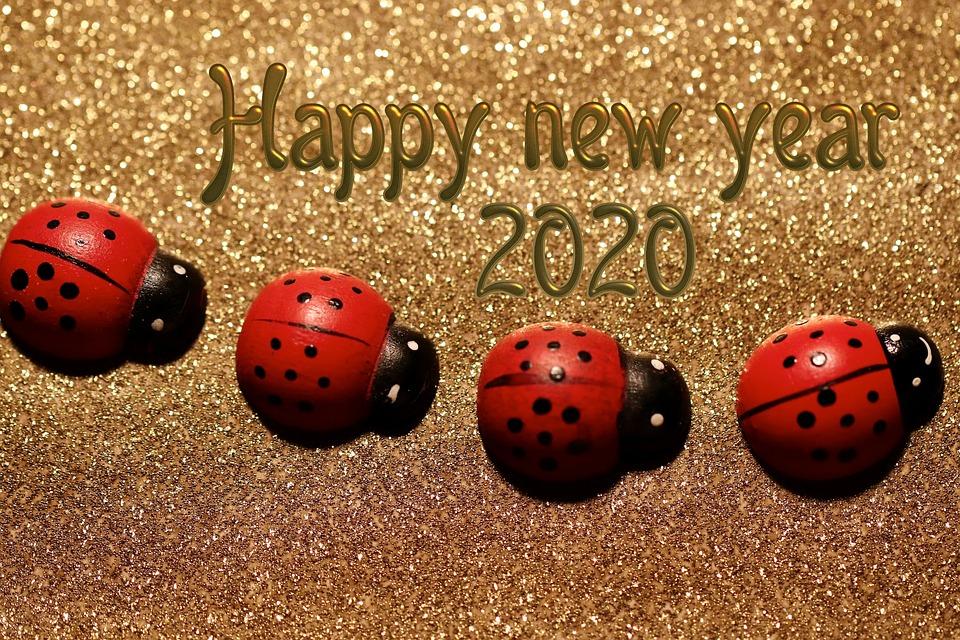 Día De Año Nuevo, Víspera De Año Nuevo, Fin De Año