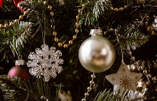 Christmas, Tree, Decoration, Holiday