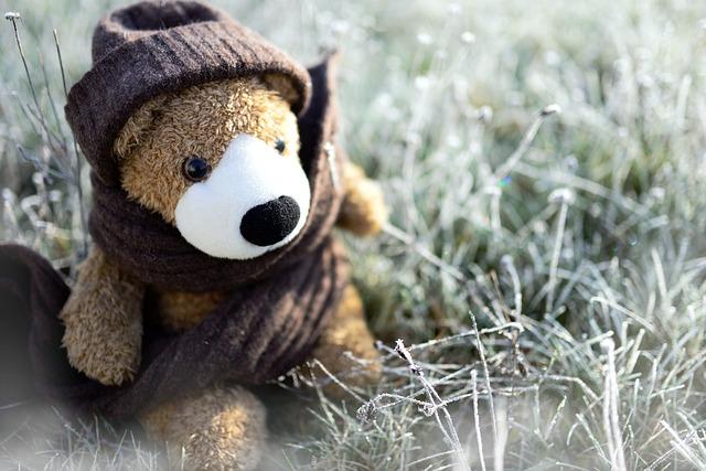 Teddy Bear Toys Stuffed Free Photo On Pixabay