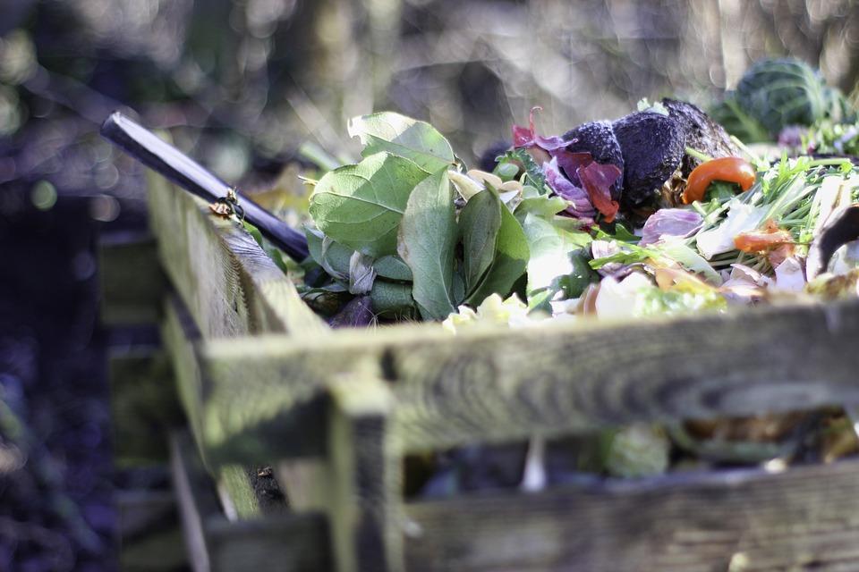 Garten, Kompost, Natur, Bio, Boden, Gartenarbeit