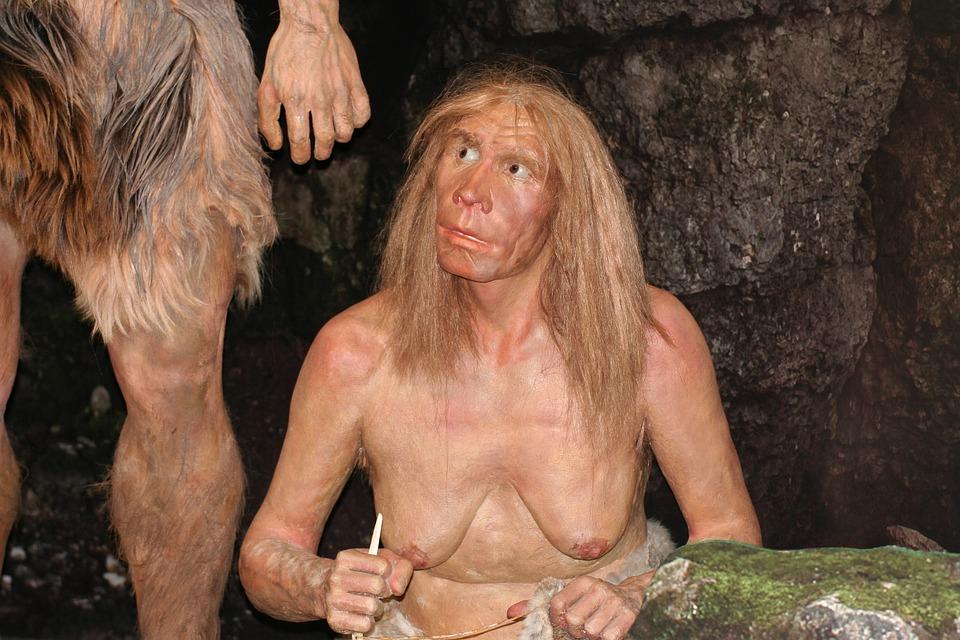 Przodek, Neandertalczyk, Historia