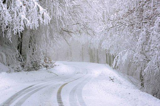 Snow, Cold, Trees, Road, Christmas
