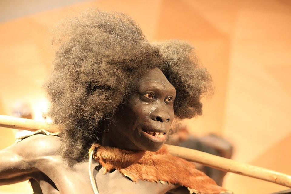 """Résultat de recherche d'images pour """"néandertal"""""""""""