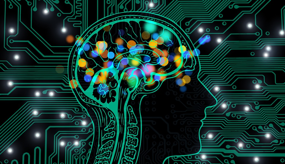 Artificial Intelligence In Your Business: How To Implement?